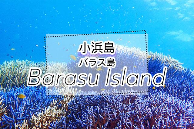 小浜島発バラス島ツアー