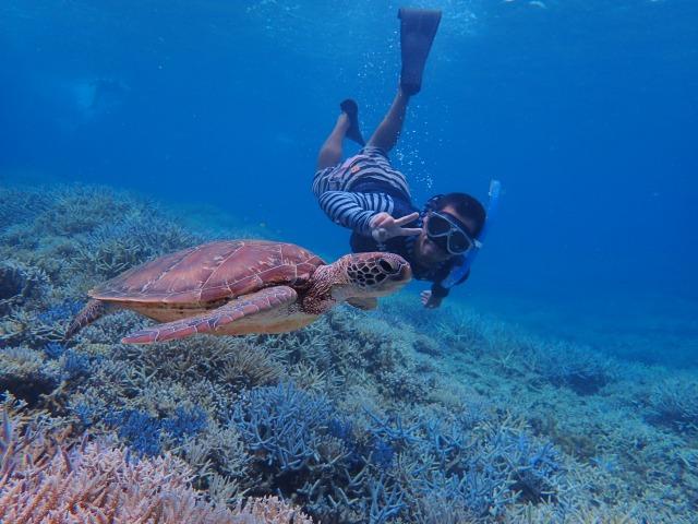 ウミガメと一緒に泳ぐ男性