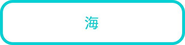 石垣島の海でのSUPツアー一覧