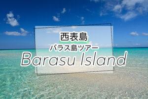 西表島のバラス島ツアー
