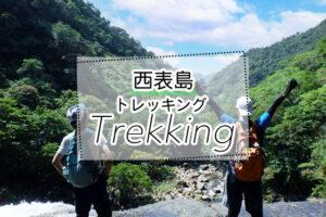 西表島のトレッキングツアー