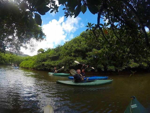 家族で西表島マングローブカヌーを楽しむ