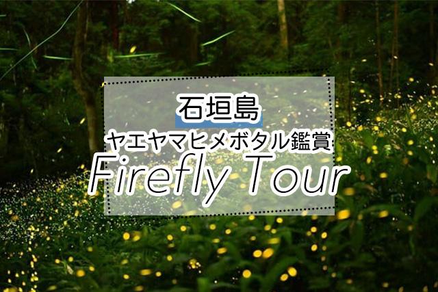 石垣島のヤエヤマヒメボタルツアー