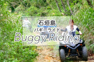 石垣島のバギーツアー