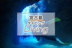 宮古島のダイビングツアー
