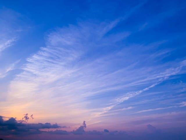 早朝の西表島の風景