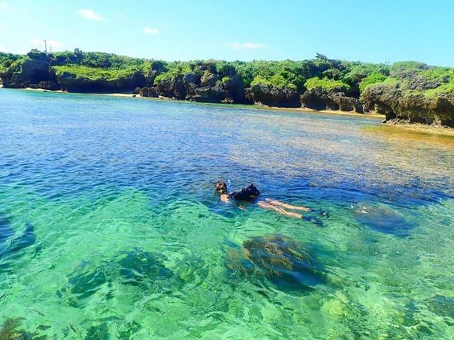 西表島の透明度抜群の海でシュノーケリング