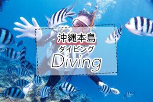 沖縄の体験ダイビングツアー