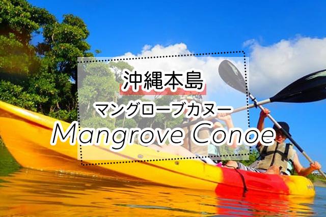 沖縄のマングローブカヌーツアー
