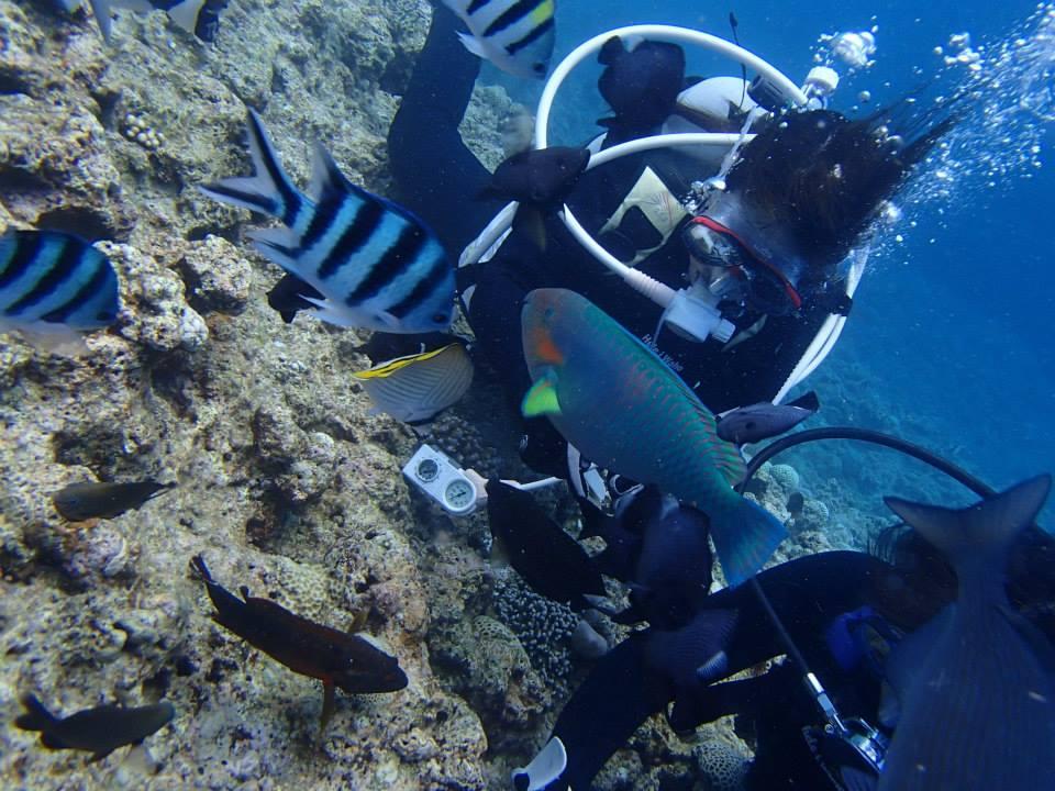 沖縄の青の洞窟で体験ダイビングツアーでお魚と戯れる