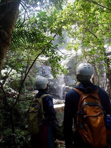 絶景を眺められる西表島の滝