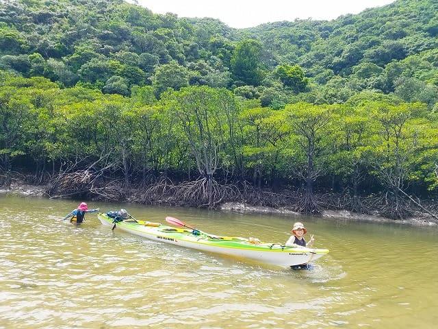マングローブ川で歩く参加者
