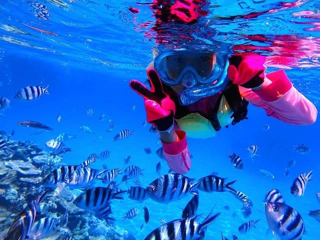 海水魚と一緒に泳ぐ女性