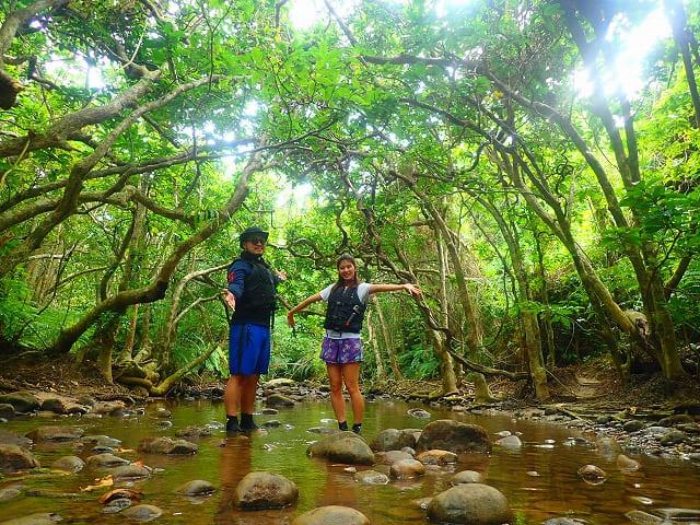 西表島のジャングルをトレッキング