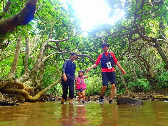 モダマ池へ向かう途中のハイキング