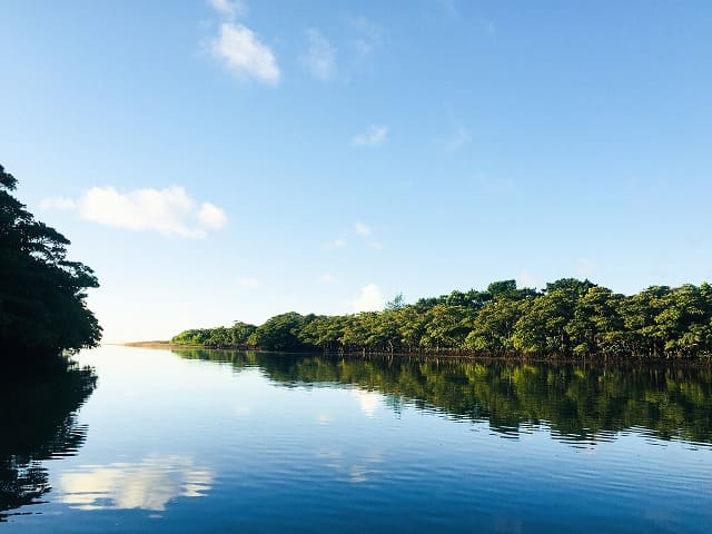 朝日で海面が反射した石垣島の宮良川