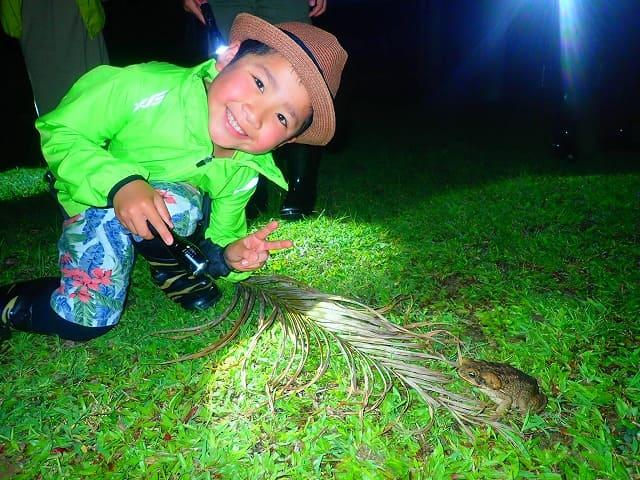 お子様と亜熱帯動物