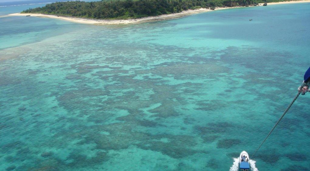 沖縄の海でパラセーリングしながら見る海は青い