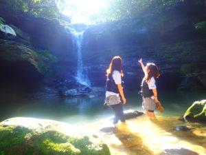 西表島を半日で楽しめるクーラの滝ツアー