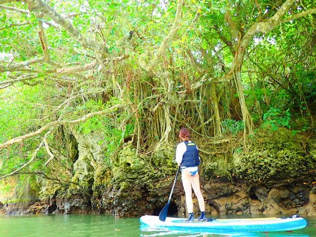 マングローブ林でカヌーを体験する女性