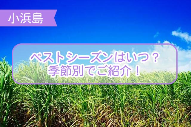 小浜島のベストシーズンについて