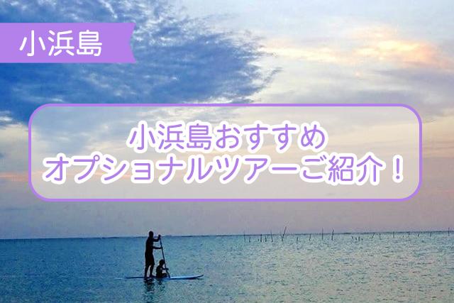 小浜島のオプショナルツアーについて