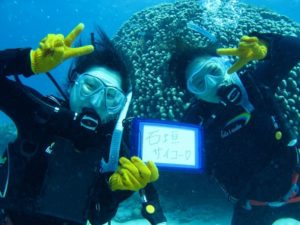 初めての体験ダイビングを楽しむ女性たち
