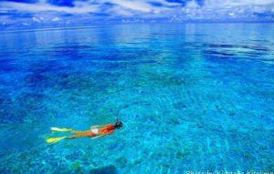 西表島の海でシュノーケリングをする女性