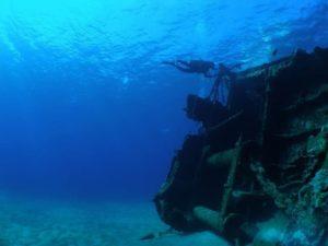 小魚がたくさん生息する沈没船付近