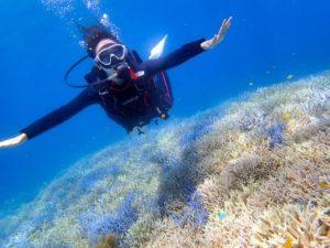 珊瑚礁の近くでダイビングをする人