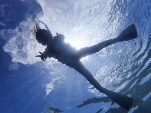 透明度抜群の西表島の海でダイビング体験