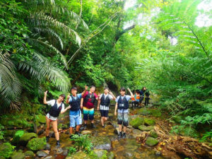 日本有数の亜熱帯原生林をトレッキング
