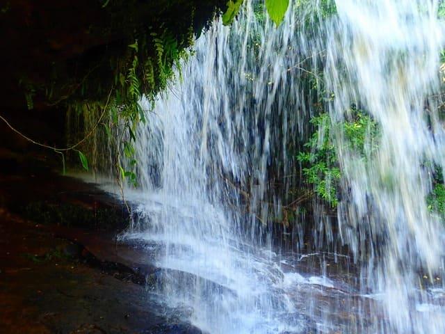 西表島のサンガラの滝裏