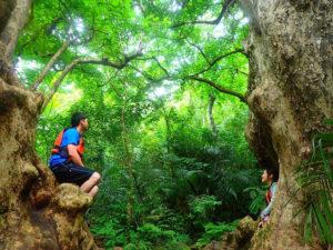 マングローブの木々の前で写真撮影