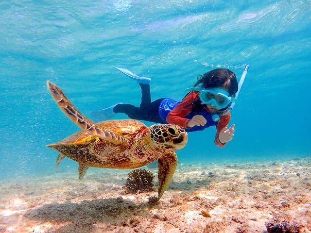 シュノーケリングでウミガメと一緒に泳ぐ子供