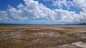 小浜島の南風花海岸