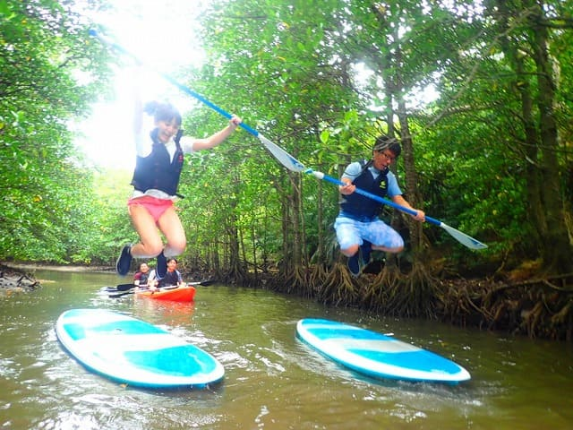 石垣島の宮良川のマングローブSUPをするカップル