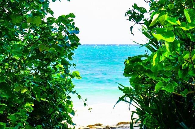 小浜島の細崎