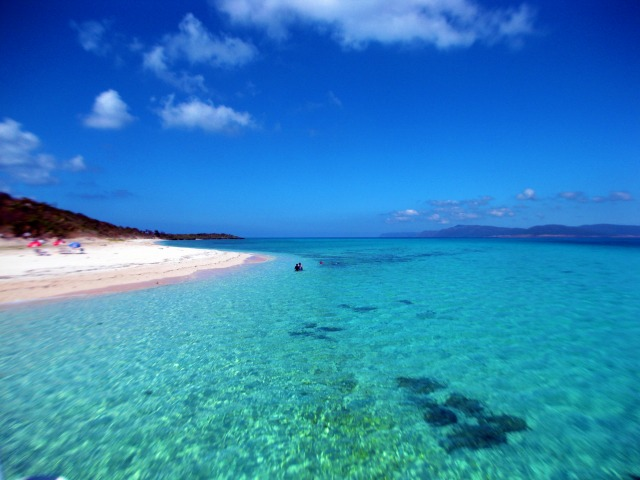 パナリ島周辺で透明度抜群の海を船から眺める