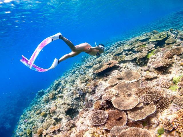 石垣島の海でのシュノーケリング
