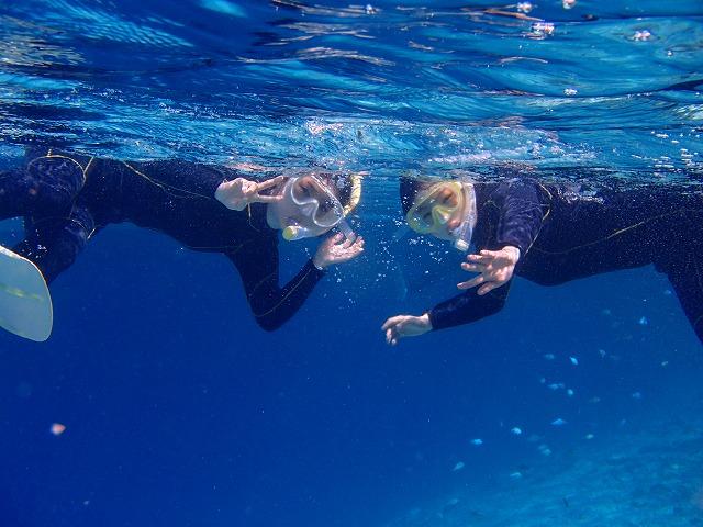 日本有数の海でシュノーケリングを楽しむ参加者
