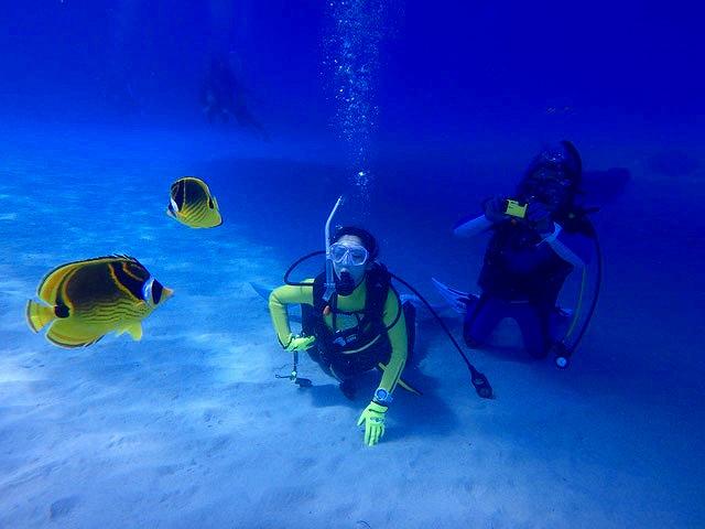 熱帯魚がすぐそこに楽しめるチービシダイビング