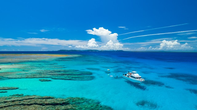 本有数のシュノーケリングスポット慶良間諸島の海