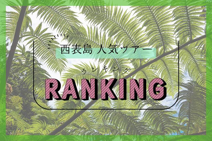 西表島の人気ツアーランキング
